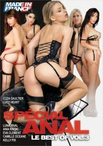 Special Anal vol 3 (2021) 1080